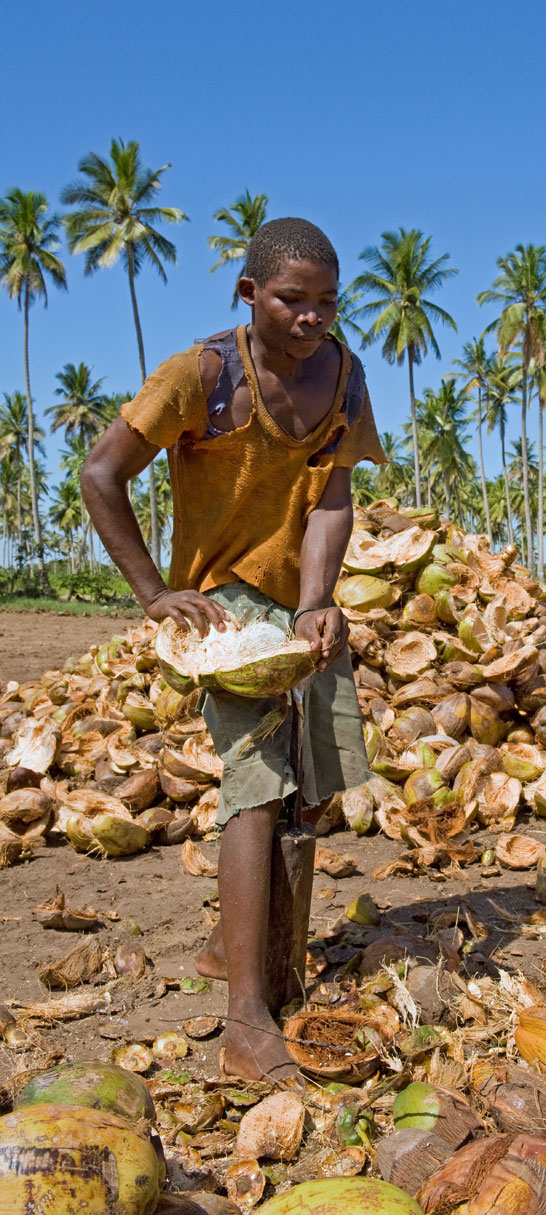A worker dehusks the coconuts<p> by hand to extract the shell.