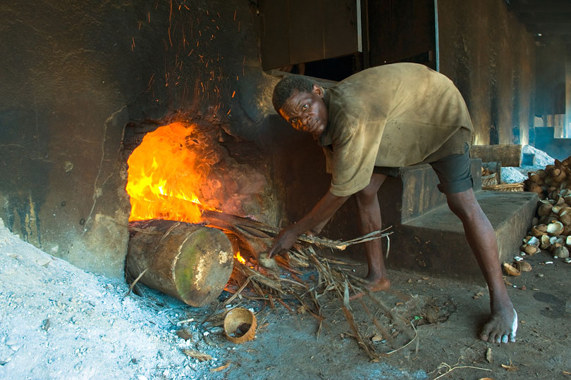Palm logs are burnt to heat<p> the kiln from underneath.